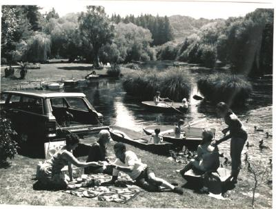 A picnic at Hamurana Springs