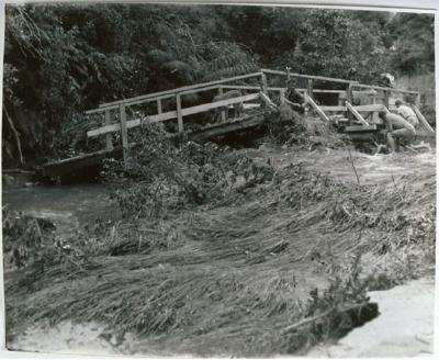 1973 eruption damage, John Musgrave (adult)
